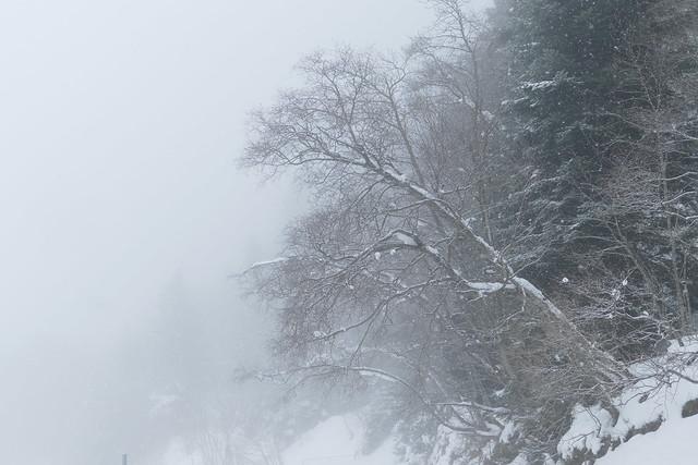 It's snowing again ...