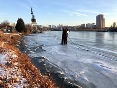 Frozen Wilmington