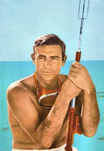 Sean Connery in Dr. No (1962)
