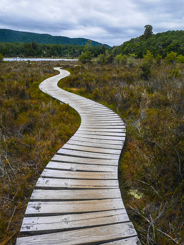 Boardwalk in the wetlands | by snackronym