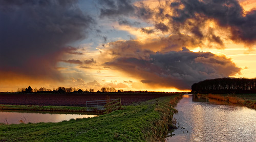 nature sunset landscape water reflection sky dusk outdoors ruralscene cloudsky scenics river summer sunrisedawn sun beautyinnature sunlight lake blue agriculture