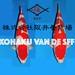 4 Kohaku van de aankomende SFF Auction besproken