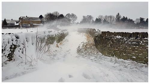 wind driftingsnow winter countryside path uk yorkshire