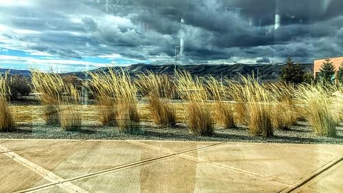 glass view desert wind mountains sagebrush grass blow clouds storm surreal