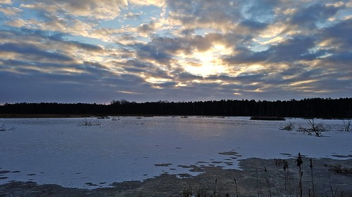 sunset sun ice clouds winter truskaw forest sky samsung