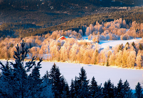 winter snow frost lake ice shore forest hills trees spruces countryside farm field sander maridalen oslo norway