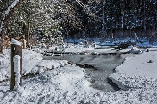 2018 bigelowhollowstatepark billcannon connecticut mashapaug union unionconnecticut billandkent snow winter