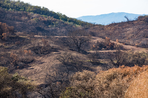 December 2017 Fire Aftermath