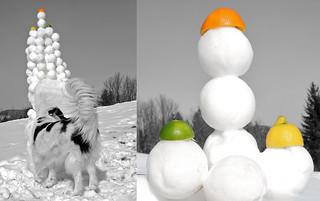 SNOWBALL-ARTEMIS