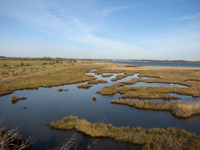 Marshes near Shotley Gate