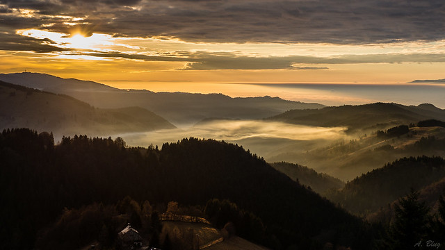 Nebel überm Münstertal