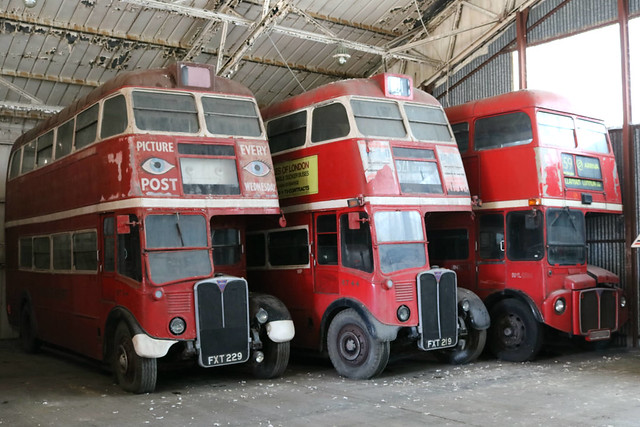 London Transport FXT219 FXT229 November 2016