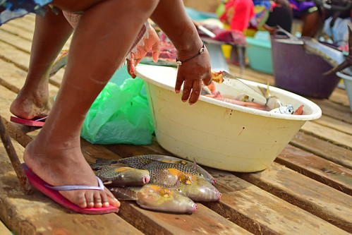 Cape verde women cleaning fish | by roan.retera