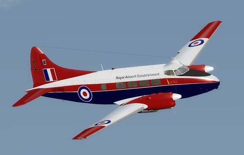 28_JF Dove | by andyw277