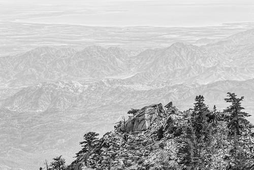 mountsanjacintostatepark mountain palmsprings bw blackandwhite d750 forest lightroom monochrome nikon silverefexpro saltonsea desert wilderness grubbsview