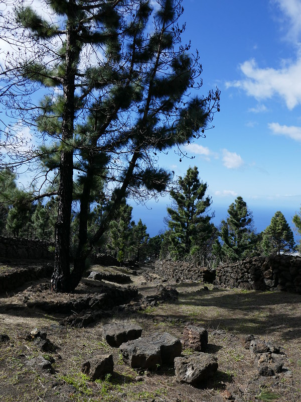 Pics from La Palma