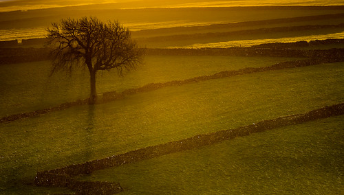 sunrise litton drystonewalls derbyshire whitepeak peakdistrict mist shadow skeleton