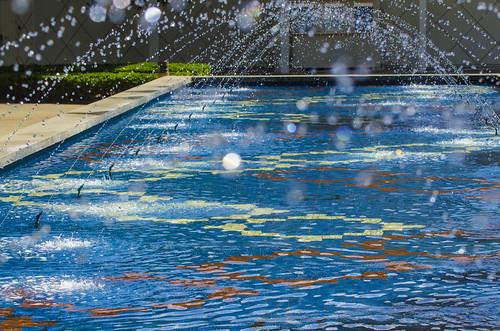 Gene-Pool_8667.jpg