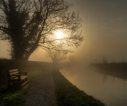 bench fog sunrise relax walk walking canal towpath path