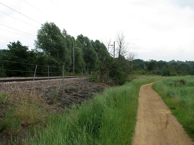 Path beside the river Colne near Wivenhoe