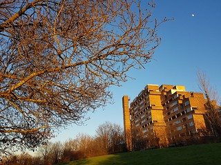 Winter sun on Dawsons Hill