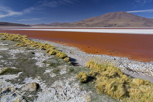 Laguna Colorada (Red Lagoon) in the Altiplano, Bolivia | by Tim van Woensel