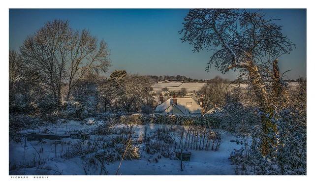 Castlefield Allotments at dawn, Eynsford, Kent.