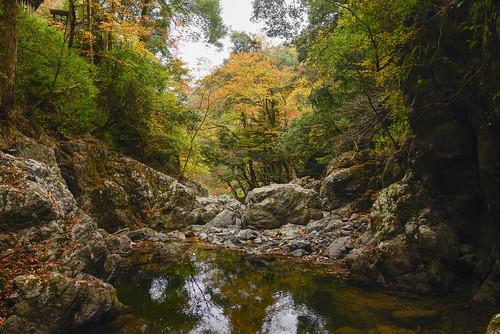 autumn fukuchiyama japan kyoto oechonaiku 京都 大江町内宮 日本 福知山 秋天 關西 fukuchiyamashi kyōtofu jp