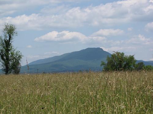 virginia newmarket battlefield statehistoricalpark shenandoahvalley vmi
