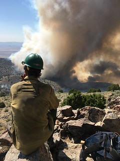 limerick-fire-that-started-july-3-2017-15-miles-northeast-of-lovelock-nevada_35653578251_o | by Nevada Fire Info