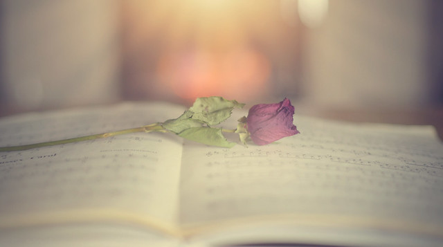 The Book of Roses...