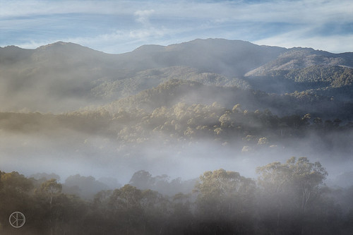 kosciuszko national park australia morning dew clouds blue sky over forest green stunning view awake sun sunshine sunrise shadows geehi flats trees tree tops treetops australië