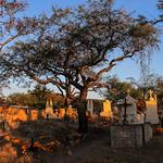Oaxaca Día Muertos  2017(96)