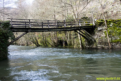 Puente sobre aguas tranquilas