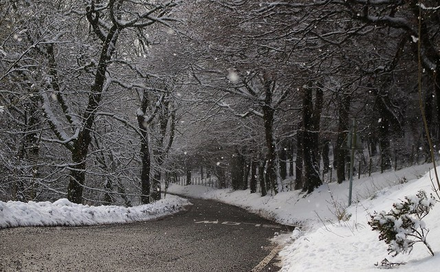 derbyshire road and snow woodland 2018 (9)