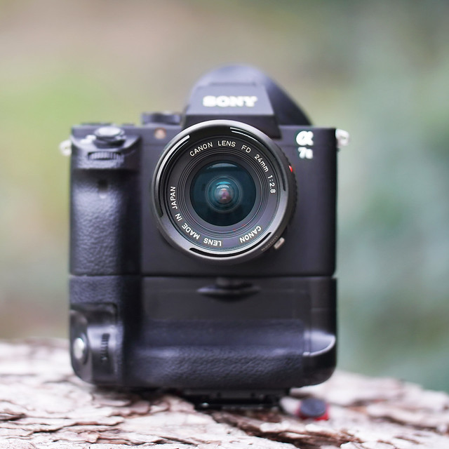 Canon nFD 24mm ƒ/2.8 on SONY ⍺7II