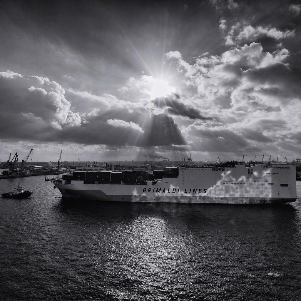 die Elbphilharmonie spiegelt sich auf der Bordwand eines Schiffes