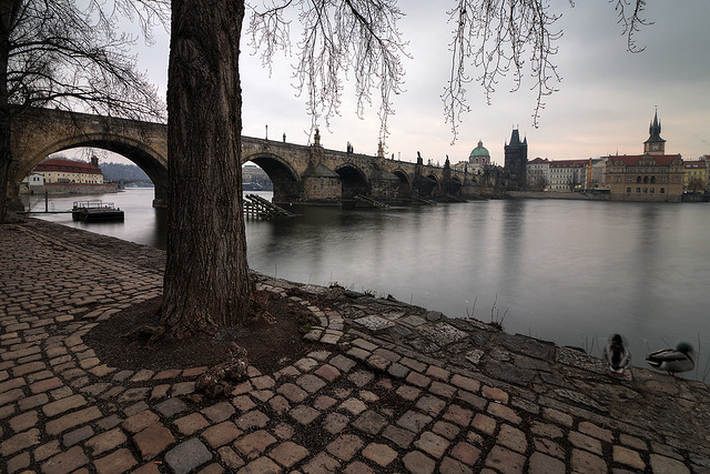 winter tones of prague