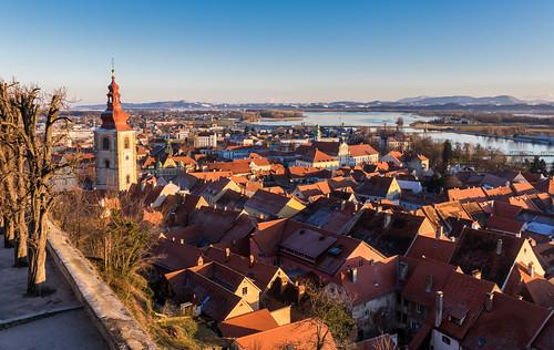 slovenia ptuj castlehill town city cityscape sunset roofs trees sky steeple hdr oldtown