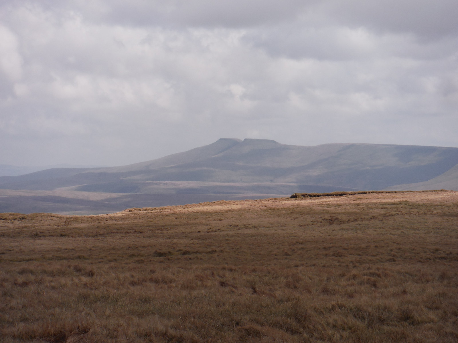 Pen y Fan and Corn Du from on Fan Gyhirych SWC Walk 307 - Fforest Fawr Traverse (Craig y Nos to Llwyn-y-celyn)