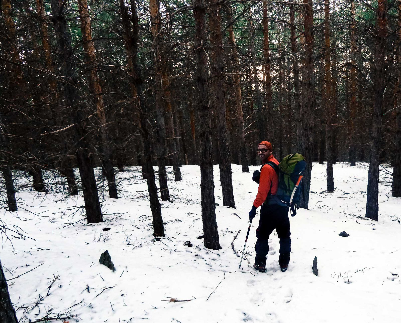 Últimos pasos por el bosque