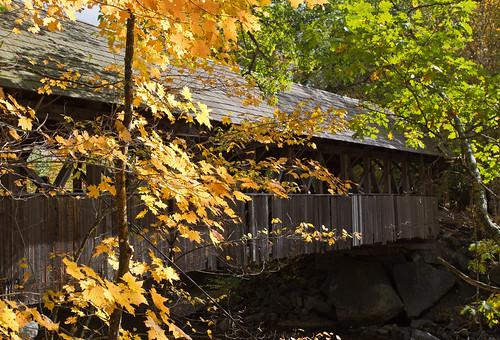 usa maine bethel sundayriver fall autumn red yellow orange trees river