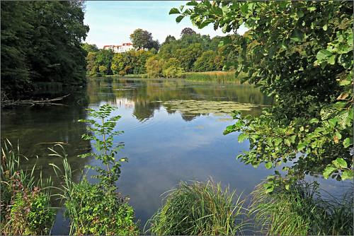 claudelina belgium belgique belgïe bruxelles brussel auderghem jardin jardinbotaniqueexpérimentaljeanmassart garden jeanmassart étang