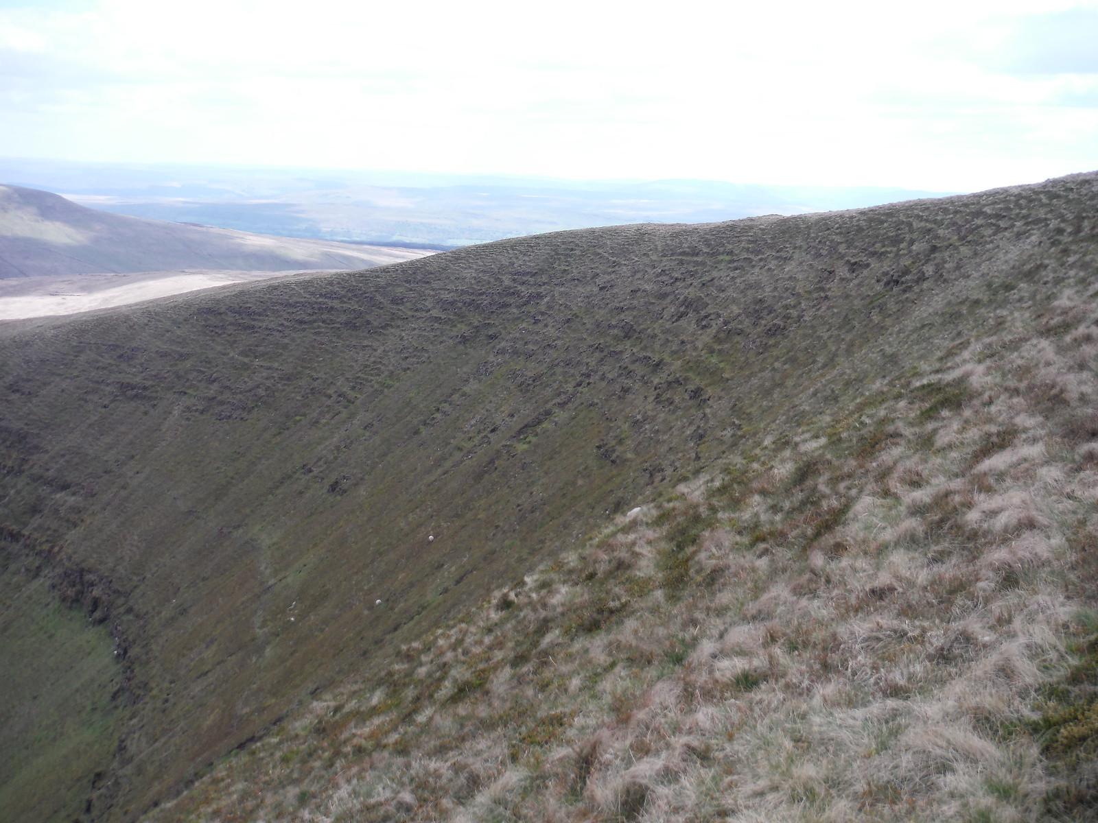 Scarp of Fan Gyhirych SWC Walk 307 - Fforest Fawr Traverse (Craig y Nos to Llwyn-y-celyn)