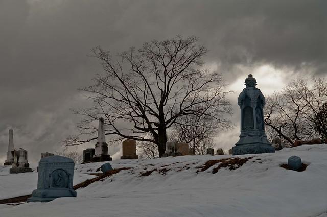 Late Winter Snow [Explore Feb 11, 2018]