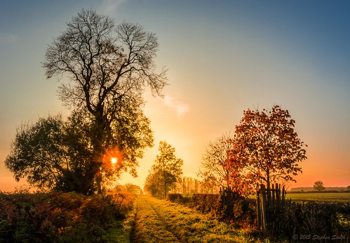 2015 october autumn holcot northamptonshire england english uk landscape countryside rural nature natural sunset dusk contrejour backlighting sunburst oaktrees beechtrees lateafternoon hedgerows trees track countrylane nikon d7200 hdr colour gold warm tranquil peaceful scerene beauty walgrave sky
