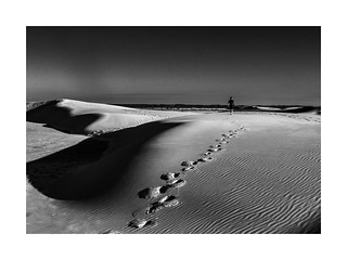 Quo vadis? | by J. Adilson