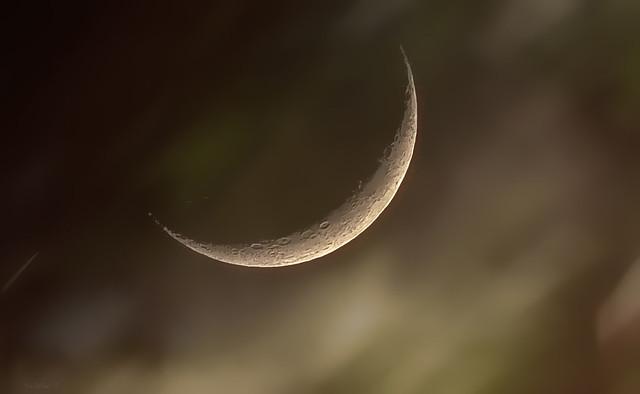 Moondust..