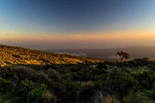 kilimanjaro mountkilimanjaro mountains sunset