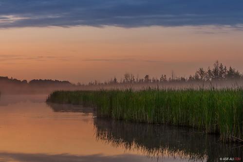 morning summer mist reflection nature water sunrise photography twilight merblue asifaali asifalicom